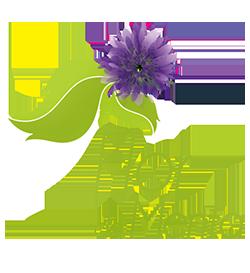 Flor de Menta e Ibrape