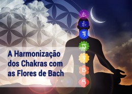 matriz-harm-chakras